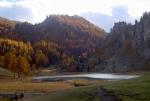My love of autumn coloured photograpy / Living in the North Western Alps of Italy suprises me with her beauty every Autumn.  It takes my breath away.  I hope you enjoy my photos too!