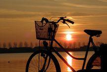 Motion: Cycling as ART / by Michael Dismuke