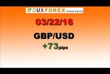 Daily Forex Profits Performance 03/22/16