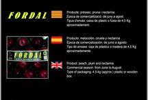 Jordi Duran Duran / Cooperativa de Fruita de Piera