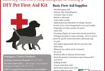 Pet First Aid Tips and Emergency Information / Do you know what to do in case of a pet emergency?  Prepare yourself with first aid basics to provide emergency care until veterinary help is available.