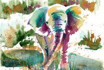 éléphant watercolors