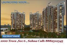 """1000 Trees (Joint Venture Project) / @8882512345 """"Geoworks 1000 Trees Residential Projects, Geoworks 1000 Trees New Projects Gurgaon, Geoworks 1000 Trees Residential Properties Gurgaon, Geoworks 1000 Trees Apartments Gurgaon, Geoworks 1000 Trees Flats Gurgaon, Geoworks 1000 Trees Developers Gurgaon,  Geoworks 1000 Trees New Constructions in Gurgaon, Upcoming Projects of Geoworks 1000 Trees Gurgaon, Geoworks 1000 Trees Builders Gurgaon, Geoworks 1000 Trees Builder Gurgaon, Geoworks 1000 Trees Original Booking Call 8882512345"""