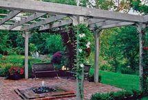 For the Backyard / by Elizabeth Miller