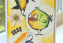 birds tim holz