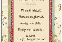 szaki -Oktatás