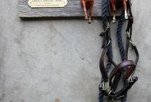 Horse DIY