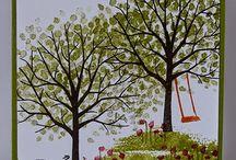 Cards - SU Sheltering Tree