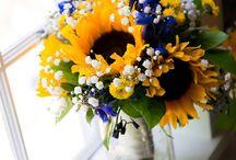Reading Sunflower-Inspiration