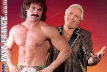 Vintage Pro-Wrestling ( WWF / WCW / NWA / AWA / Etc.)