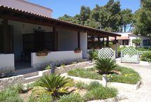 Parco Carabella Hotel / Parco Carabella Hotel & Residence,sorge a Vieste fronte il mare Adriatico. Disponiamo di camere ed appartamenti,con piscina privata.