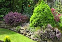 Beautiful garden borders
