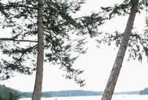 San Juan Island Weddings / San Juan wedding group board for Seattle area wedding planners and coordinators. | Real Weddings, Seattle Bride, Seattle Wedding Planner, Seattle Wedding Coordinator, Day of Wedding Coordinator