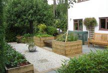 IJLA - Plant Collectors Garden / Landscape Architecture Landscape Design Garden Design