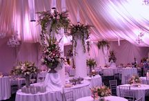 Dream Wedding Ideas / What's your favorite?