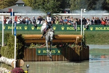 World Equestrian Games - Kentucky / Awesome photographs of the World Equestrian Games and Kentucky landscape