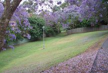 Denistone, NSW