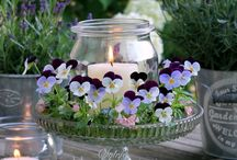 Home and garden decoration- Spring