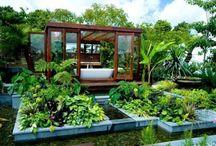Беседки, летние домики / Интересные варианты для создания атмосферы в саду