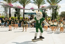 Campus Life and Activities  / by USF Housing & Residential Education