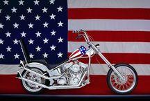 Harley Harley Harley