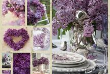 Lilacs and Spring