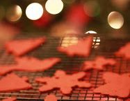 Holidays / by Danna Nims