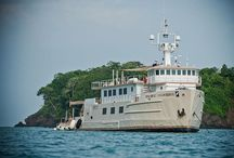 The Pacific Provider Expedition Yacht