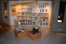 Időszaki kiállításaink - Temporary exhibitions