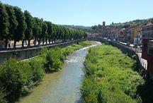 Dogliani / Doglini è la città che ospita l'Agriturismo Cascina Martina