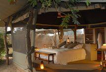 Zambia: Safari Camps, Lodges, Hotels