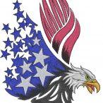 Eagles / American Eagles