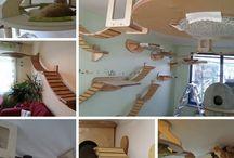 Cat furnitures