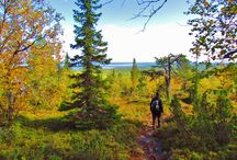 Summer Activities in Taivalkoski / biking, hiking, canoeing, hunting, fishing, berry & mushroom collecting