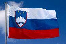 Slovenia / si.findiagroup.com