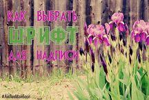 Ай Лав Май Блог