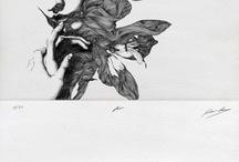 illustrations + artwork