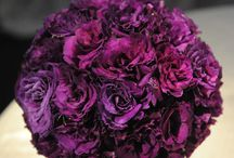 Purple / by Aronia C.