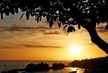 Ilha da Madeira / A minha terra
