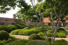 Rosanna St Garden Ideas