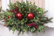 Christmas / by Shelley Scribner