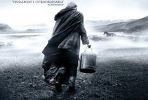 "inspiration: POSTERS: MOVIES: ""THE TURIN HORSE"" (2011)"