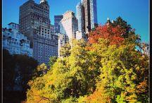 New-York mon amour