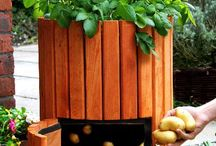 DIY POTATO BARREL