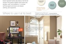 Colorways: Your Guide to Choosing Interior Color