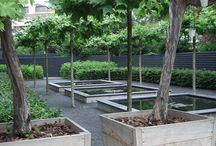 Moderne tuinen / Moderne tuinen welke door Rodenburg tuinen zijn gerealiseerd. Voor een modern tuinontwerp en tuinaanleg.