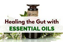 EO gut healing