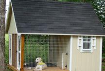 Dog House / by Diane Harper