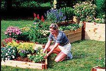 Jerry Baker, Master Gardener