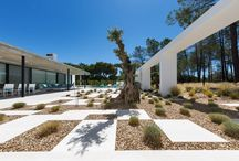 Villa Almancil / A garden flanked by a pine grove, where the contemporary reigns. The layout of the flagstones defines the garden areas, punctuated with grass and herbs which, in conjunction with the wind, transmit a sense of movement.  Olive trees punctuate the spaces and give a more Mediterranean touch to the garden.  The coloured pebbles make the planting area stand out and distinguish the pathways and garden areas.